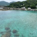 ブログ挑戦NO11 高知県柏島